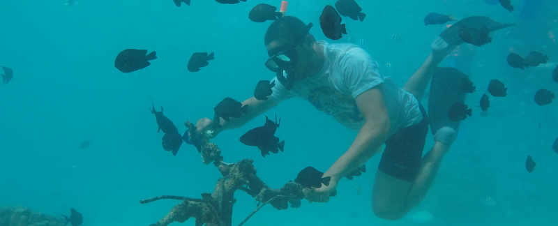 aceh snorkeling