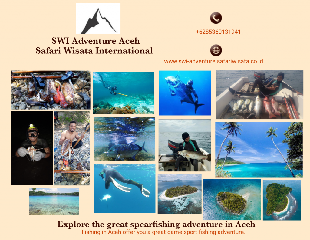 Aceh Spearfishing